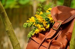 backpack-1482612_1920