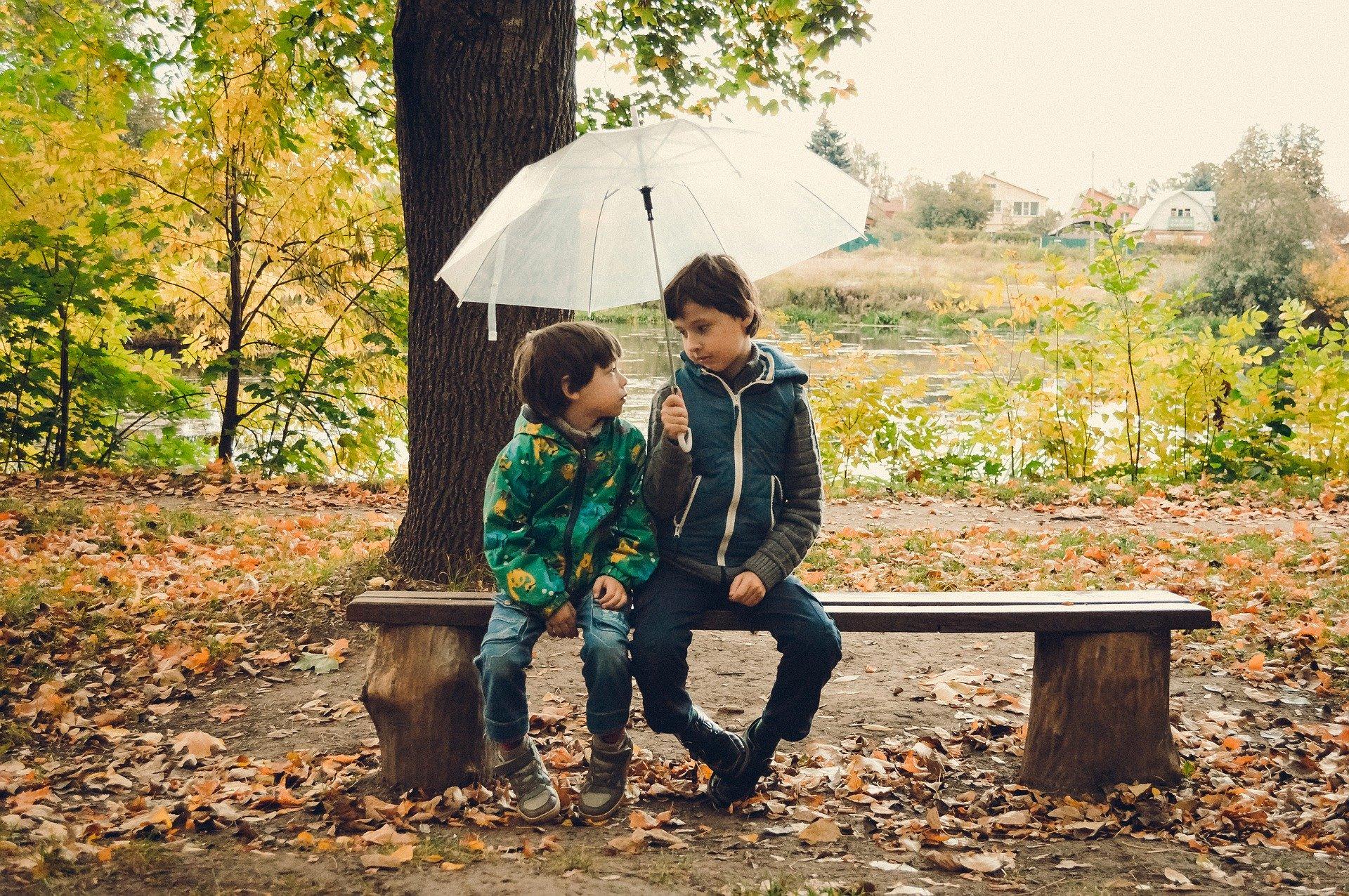 umbrella-4505248_1920